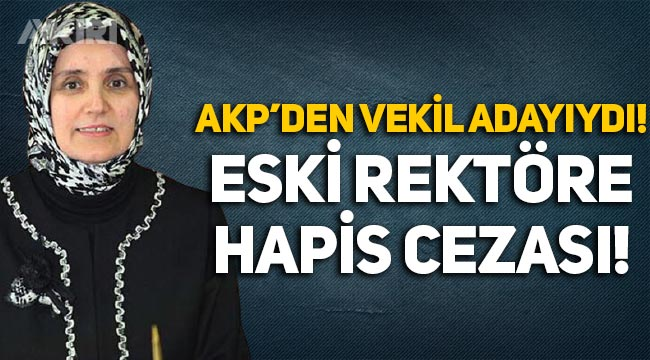 AKP'den milletvekili olamayan eski rektör Ayşegül Jale Saraç'a hapis cezası!