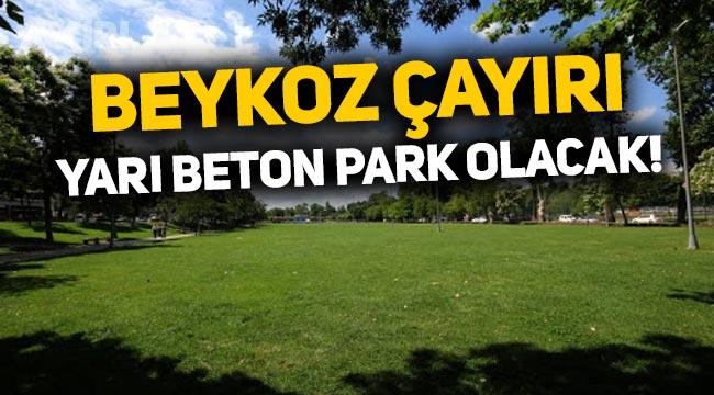 Asırlık Beykoz Çayırı, yarı beton park oluyor: Millet Bahçesi yapılacak!
