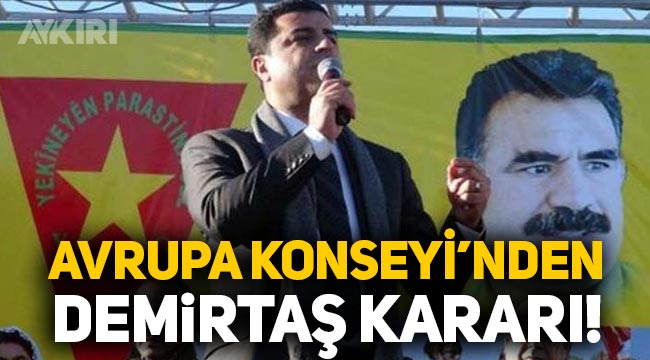 Avrupa Konseyi Bakanlar Komitesi'nden Selahattin Demirtaş ve Osman Kavala kararı!