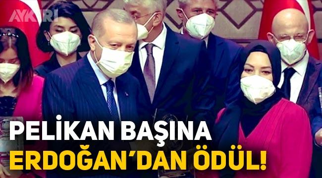 """Pelikan başı Hilal Kaplan'a Erdoğan'dan """"Yılın kitabı"""" ödülü"""
