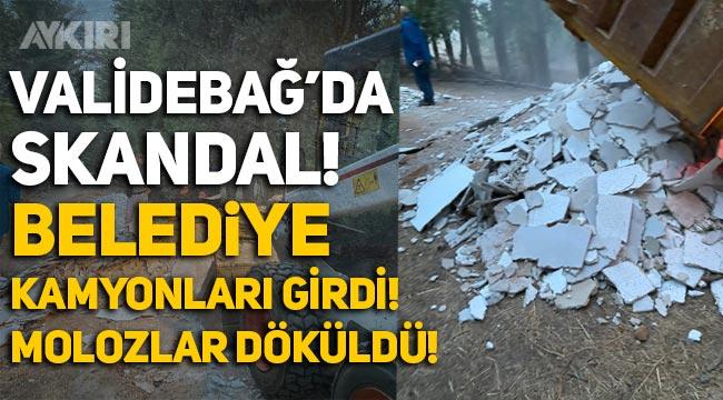 Validebağ Korusu'nda skandal! Üsküdar Belediyesi kamyonları girdi, molozlar döküldü