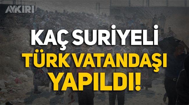 Rapor: 174 bin Suriyeli, Türk vatandaşı yapıldı!
